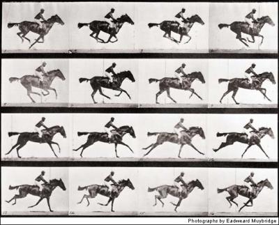 Rozfázovaný běh koně na fotografiích Edwarda MuyBridge