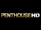 penthouse-hd-perex