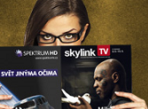 skylink_program