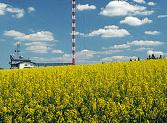 plzenkrasov