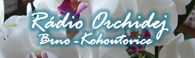 radioorchidej_brno