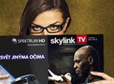 skylink-tv-icon