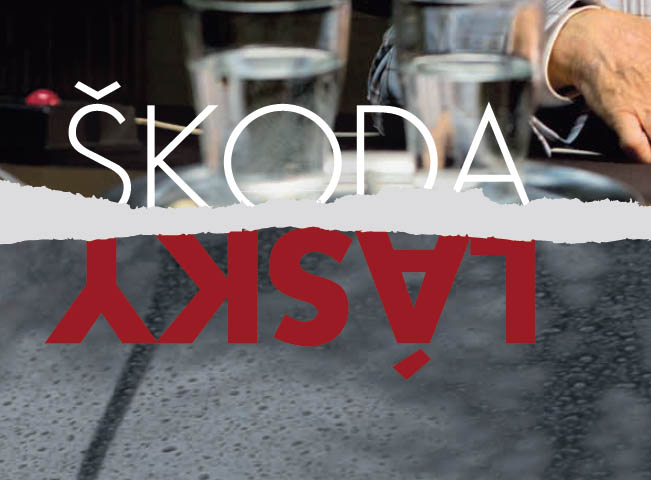 skoda-lasky-651