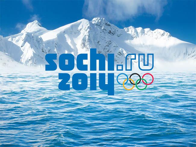 soci-2014-651
