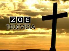 zoe-tv-335-noperex