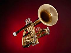 trumpeta-335