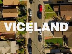 viceland-651