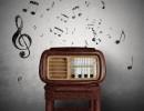 Ilustrace - Shutterstock.com