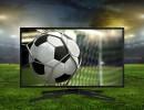 Ilustrace: Shutterstock.com