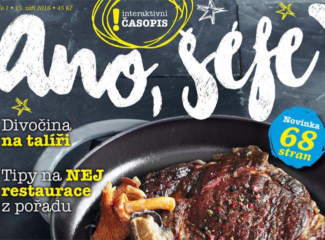 Ukázka horní části titulní strany časopisu Ano, šéfe. Zdroj: FTV Prima